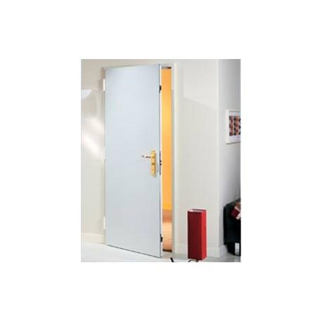 Puerta acorazada para piso palieris 371 for Puertas para pisos
